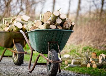 wywóz drewna dr drwal (2)