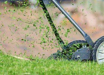 Koszenie trawników abonament DrDrwal