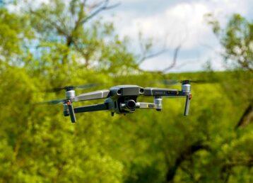 Ściąganie dronów z drzew DrDrwal
